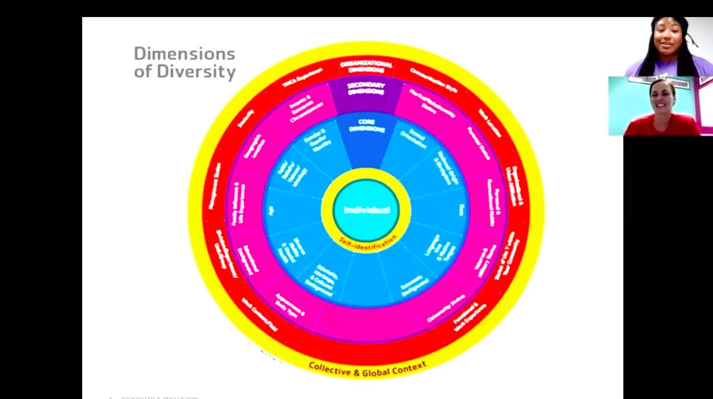 dimensionsdiversity